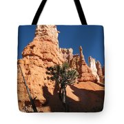 Light And Shadow In The Bryce Canyon  Tote Bag