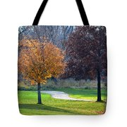 Light And Shadows In Autumn Tote Bag