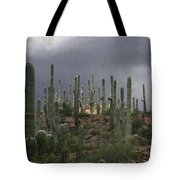 Light At The Top Tote Bag