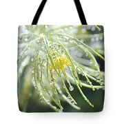Light Catchers Tote Bag