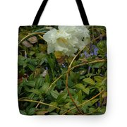 Light Daffodils Tote Bag
