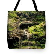 light flow at Cathedral Falls Tote Bag