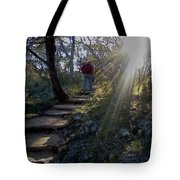 Light For The Path Tote Bag