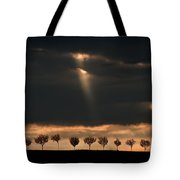Light From The Sky Tote Bag