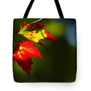 Light Gives Us All A Chance Tote Bag by Aimelle