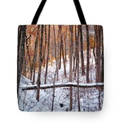 Light In The Valley Tote Bag