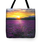 Light Just Right Tote Bag