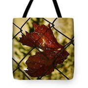Light Leaf Links Tote Bag