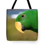 Light Of Love - Eclectus Parrot Tote Bag