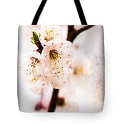 Light Of Spring 3 Tote Bag
