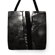Light Of The Morn Tote Bag