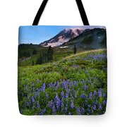 Light On The Mountain Tote Bag