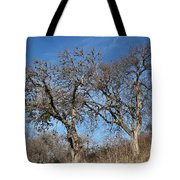 Light Posts And Trees Tote Bag