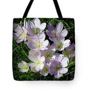 Light Purple Crocus Flowers In Spring Tote Bag