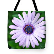 Light Purple Daisy  Tote Bag