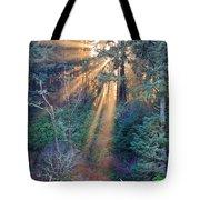 Light Shine Tote Bag