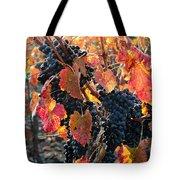 Light Through Fall Vineyard Tote Bag