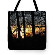 Light Through The Trees Tote Bag