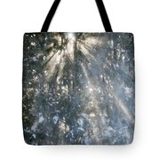 Light Throught The Trees Tote Bag