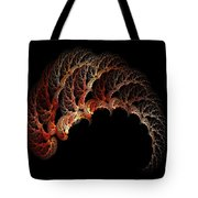 Light Under A Shell Tote Bag
