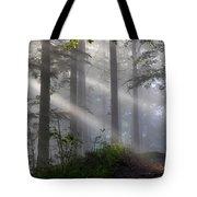 Lightbeams Tote Bag