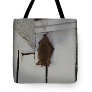 Lighthouse Bat Tote Bag