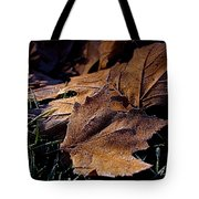 Lightly Frosted Tote Bag by Rona Black