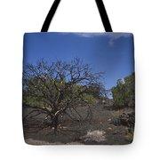 Lightning Struck Tree Tote Bag