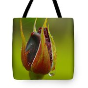 Like A Little Wet Promise Tote Bag