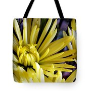 Like Bombs Bursting In Air Tote Bag