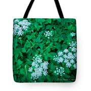 Like Queen Annes Lace Tote Bag