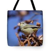 Lil' Bit - Orange-crowned Warbler Tote Bag