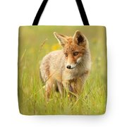 Lil' Hunter - Red Fox Cub Tote Bag