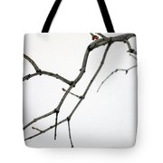 Lilac Branches Tote Bag