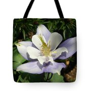 Lilac Columbine Tote Bag