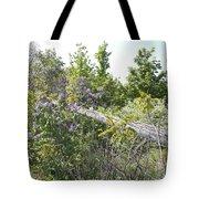 Lilac Fence IIi Tote Bag