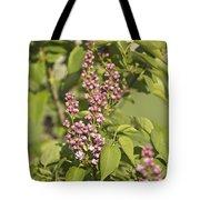 Lilac In Spring Tote Bag