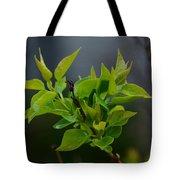 Lilac Leaves Tote Bag
