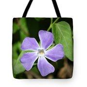 Lilac Periwinkle Tote Bag