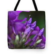 Lilac Petals And Purple Buds Tote Bag