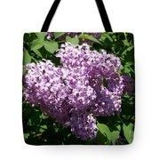 Lilac Ready For A Closeup Tote Bag
