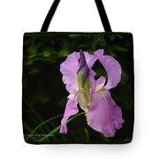 Lilac Siberian Iris Tote Bag