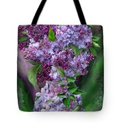 Lilacs In Lilac Vase Tote Bag