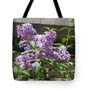 Lilacs Up Against The Wall Tote Bag