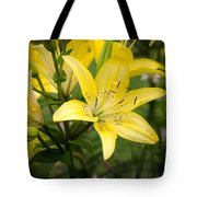 Lilies In The Sun Tote Bag