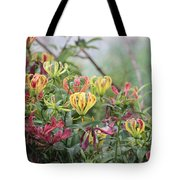 Lilies Of Color Tote Bag