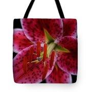 Lilium Pink Stargazer Tote Bag