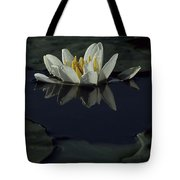 Lilly Of The Morning Tote Bag