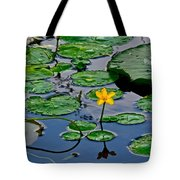 Lilly Pad Pond Tote Bag