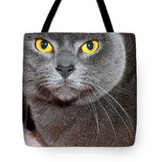 Lil'one Tote Bag